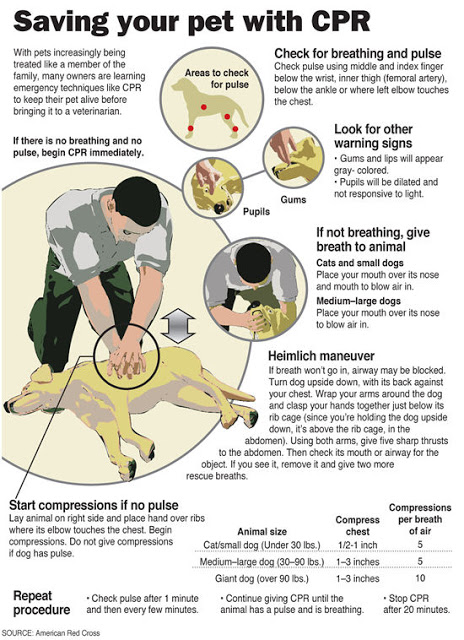 Pet CPR Reference