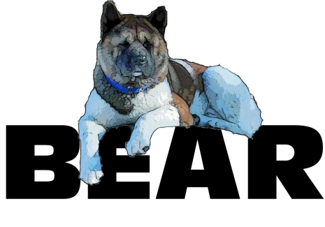 Big East Akita Rescue